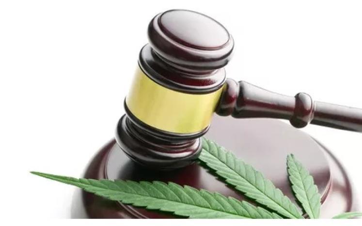 Marijuana Law Legal